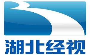 Hubei Economic ChannelLogo